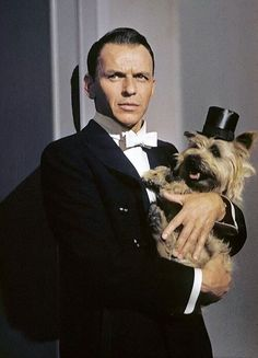 "The films of Frank Sinatra."" Frank Sinatra ""I'm for anything that. Cairns, Vintage Hollywood, Classic Hollywood, Era Do Jazz, Franck Sinatra, Emmanuelle Béart, Celebrity Dogs, Celebrity Photos, Famous Dogs"