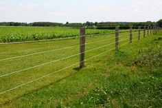 Image result for post and wire fence