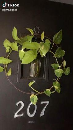 Indoor Garden, Garden Plants, Indoor Plants, Plant Projects, Garden Projects, House Plants Decor, Plant Decor, Decoration Plante, Plants Are Friends