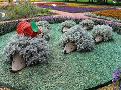 unusual yard landscaping ideas-love these in my garden