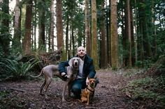 dog forest adventure photography - Google Search