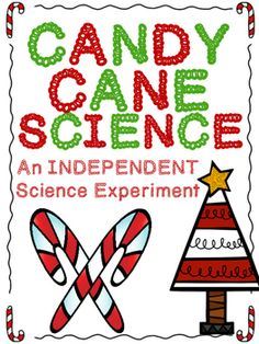 Candy Cane Science INDEPENDENT Science Experiment