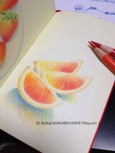 2014_03_24_orange_01_s orange ,orange ,orange!!  for this drawing I used: Faber castell polychromos Moleskine sketchbook  © Belta(WAKABAYASHI Mayumi )