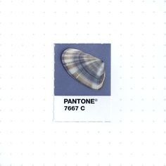 Pantone 7667 color match