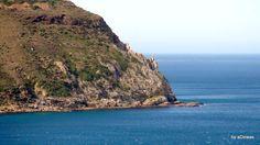 Hout Bay & Fishing Village