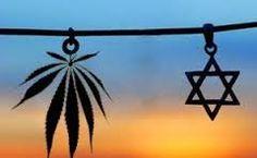 Uma Cinquentona Brasileira em Israel: A MACONHA É COISA SÉRIA EM ISRAEL