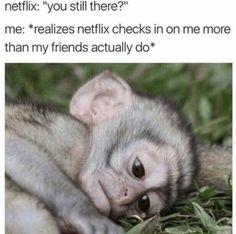 23 Dank Memes Hilarious Cant Stop Laughing 2 Funniest Hilarious Memes, Really Funny Memes, Crazy Funny Memes, Funny Video Memes, Funny Animal Memes, Stupid Memes, Funny Relatable Memes, Haha Funny, Best Memes