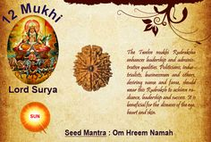 Benefits of 12 Mukhi Rudraksha: God: Lord Sun / Planet: Sun The Twelve Mukhi Rudraksha enhances leadership and administrative qualities. Politicians, industrialists, businessmen and others, desiring name and fame, should wear this Rudraksh to achieve radiance, leadership and success. It is beneficial for the diseases of the eye, heart and skin. http://www.rudralife.com/Rudraksha/details.php?id=18