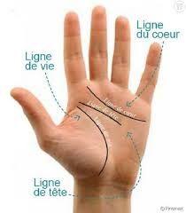 Résultats de recherche d'images pour «comment lire les ligne de la main» Palm Reading, Chakra Meditation, Palmistry, Qigong, Acupuncture, Weird Facts, Wiccan, Reiki, Sport