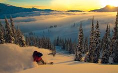 Location: Monashees, Canada. Rider: Mike Robertson Powder ski and snowboard pictures