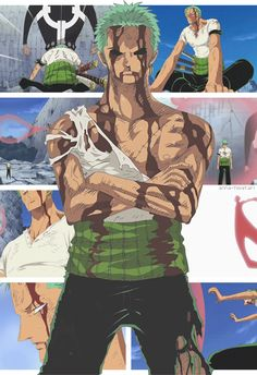 Roronoa Zoro......he fights to the end....... For his friends