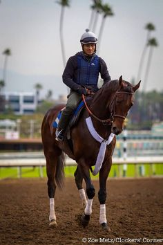 Runhappy at Santa Anita.  This beautiful colt is currently a big favorite of mine!