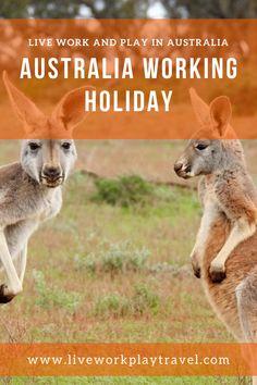 Work In Australia, Australia Travel Guide, Visit Australia, Working Holiday Visa, Working Holidays, Travel Guides, Travel Tips, Travel Info, Melbourne Travel