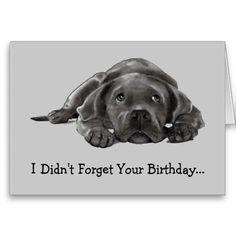 BELATED BIRTHDAY: Funny Belated Birthday CARD