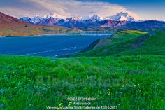 Photo of Scenic sunset view of Grassy Pass and wildflowers above Thorofare River and Alaska Range, Denali National Park & Preserve, Interior...