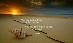 Rumi quotes are quite often quoted by people from every race. The spiritual nature of the Rumi quotes and sayings makes one realize the truth of this world. Rumi Quotes, Spiritual Quotes, Wisdom Quotes, Inspirational Quotes, Motivational, Deep Quotes, Spiritual Growth, Meaningful Quotes, Enlightenment Quotes