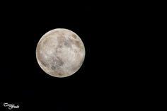 Teresa Fndz Photography: Noite de Lua Cheia