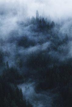 captvinvanity:   Thomas Fliegner|Nebel