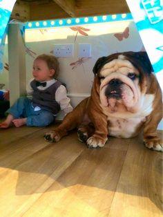 Big Boy Bully