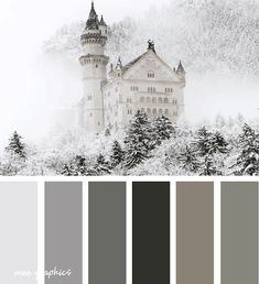 Winter Color Palettes Inspiration