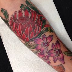 Australian Natives sleeve in progress. Thank you Jack! Orchid Tattoo, Australian Native Flowers, Henna Body Art, Tatoos, Sleeve, Instagram Posts, Aussies, Manga, Finger