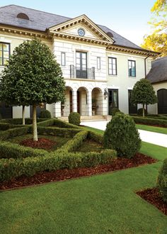 hedge mosman house landscaping Elaine Morrow Works Australia