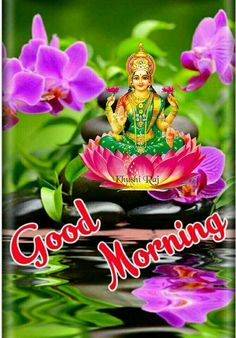 Good Morning Flowers Pictures, Flower Pictures, Good Morning Cards, Sai Ram, Cellphone Wallpaper, Happy Friday, Mornings, Tuesday, God