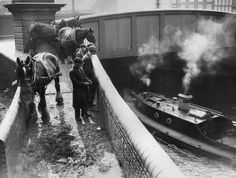 """Caption: """"11th August 1936: Barge horses waiting by Bow Bridge for their barges"""""""