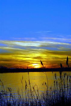 Bay Sunsets