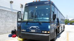 Faster, cheaper, free wi-fi, no TSA: How a Greyhound bus beats flying
