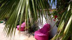 Işıl Suit  Dalyan Muğla Türkiye Outdoor Furniture, Outdoor Decor, Plants, Planters, Plant, Planting, Outdoor Furniture Sets