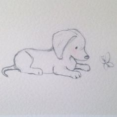 Puppy collection Dachshund and