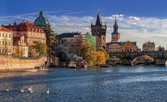 Swans on Vltava by Sergey Golotvin on Wide World, Czech Republic, Prague, Barcelona Cathedral, Swans, Boat, River, Mansions, House Styles