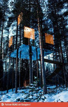 Amazing tree hotel in North Sweden.