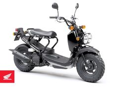 Honda ruckus - I want to live where this is my only necessary transportation