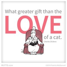 """Meow means """"I love you"""" in cat. #MUTTS"""
