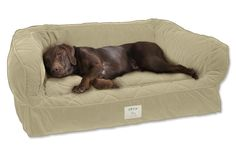 Lounger Deep Dish Dog Bed / Medium dogs up to 60 lbs.