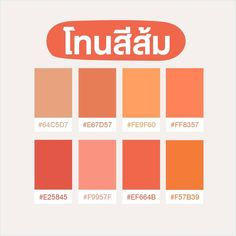Hex Color Palette, Create Color Palette, Color Palate, Pantone Color Chart, Pantone Colour Palettes, Hologram Colors, Color Palette Challenge, Mood And Tone, Instagram Frame
