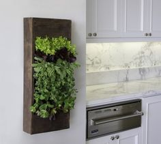 Would love to have one full of herbs in the kitchen...