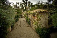 Penny Bianchi's French Farmhouse