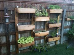 Vertical wood garden boxes on fence.