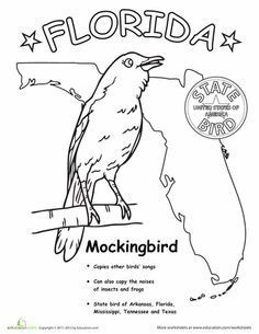 Florida State Bird Bird Coloring Pages States Capitals State