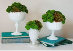 DIY Vintage Milk Glass and Moss wedding centerpieces