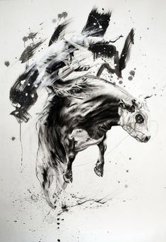 L'illustrateur Tom French