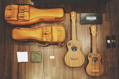 Ukulele // KoAlana, Soprano & Concert, U-2rue Limited Edition ~ http://maysahawaii.tumblr.com/post/34665675268/unvieled-koalana-special-limited-edition-the