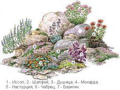 Схема альпийской горки.
