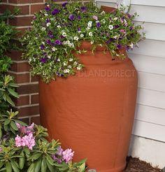 Rainbarrel with planting on top