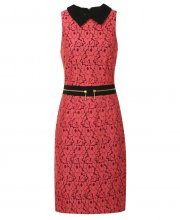 Hybrid Oxford Lace Pencil dress with Waist Zip Coral