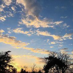 My last sunset of 2016 here. #sun #sunset #sky #clouds #home #winter #december #igers #igersitalia #igersemiliaromagna #igersbologna