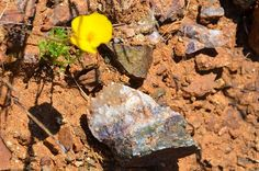 43 Best Arizona rock hunting images in 2018 | Rock hunting